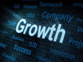 Pixeled word Growth on digital screen — Stock Photo