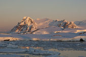 The Antarctic winter at sunset. — Foto Stock