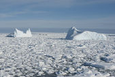 Icebergs in the Southern Ocean - 1. — Foto Stock