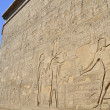 Hieroglyphic carvings on an egyptian temple wall — Stock Photo #8943191