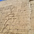 Hieroglyphic carvings on an egyptian temple wall — Stock Photo #8943422