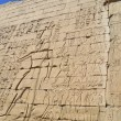 Hieroglyphic carvings on egyptitemple wall — Stock Photo #8943422