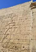 Jeroglíficos esculpidos en una pared del templo egipcio — Foto de Stock