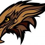 Mascot Head of an Falcon or Hawk Vector Illustration — Stock Vector #8201704