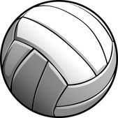 Volleyball Ball Vector Image Icon — Stock Vector