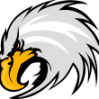 Eagle Mascot Head Vector Graphic — Stock Vector