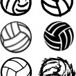 Volleyball Ball Vector Image Icons — Stock Vector #8876571