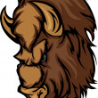 Stock Vector: Buffalo Bison Mascot Head Cartoon