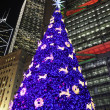 Hong Kong Night Scene with Christmas Tree - Photo
