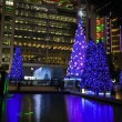 Stock Photo: Hong Kong Night Scene with Christmas Tree