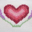 Closeup heart - Foto Stock