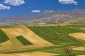 Pięknej scenerii zielonych - pola i góry — Zdjęcie stockowe