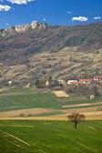 Wiosenny zielony krajobraz - łąki i góry — Zdjęcie stockowe