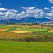 Beautiful green landscape under blue sky — Stock Photo