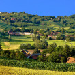 Green landscape villsge scenery, with corn and hay fields - Stock Photo