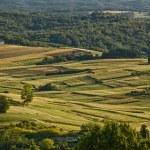 Idyllic green valley natural scenery — Stock Photo