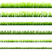 6 different types of green grass — Stock Vector