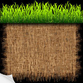 Eco background with green grass — Stock Vector