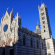 Royalty-Free Stock Photo: Duomo di Siena n.2
