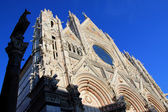Duomo di Siena n.3 — Stockfoto