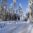 besneeuwde road, winterlandschap — Stockfoto