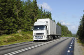 Truck on scenic forest road — Stock Photo