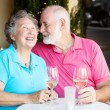 Senior Couple - Wine and Conversation — Stock Photo