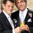 Stock Photo: Gay Couple at Wedding Reception