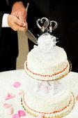 同性恋婚姻-切婚礼蛋糕 — 图库照片