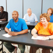 Stock Photo: Diverse Happy Adult Education Class