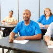 Royalty-Free Stock Photo: Diversity in Adult Education - Banner