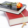 Stock Photo: Two books / Holy Bible on white background.