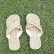 Handmade slipper on grass — 图库照片