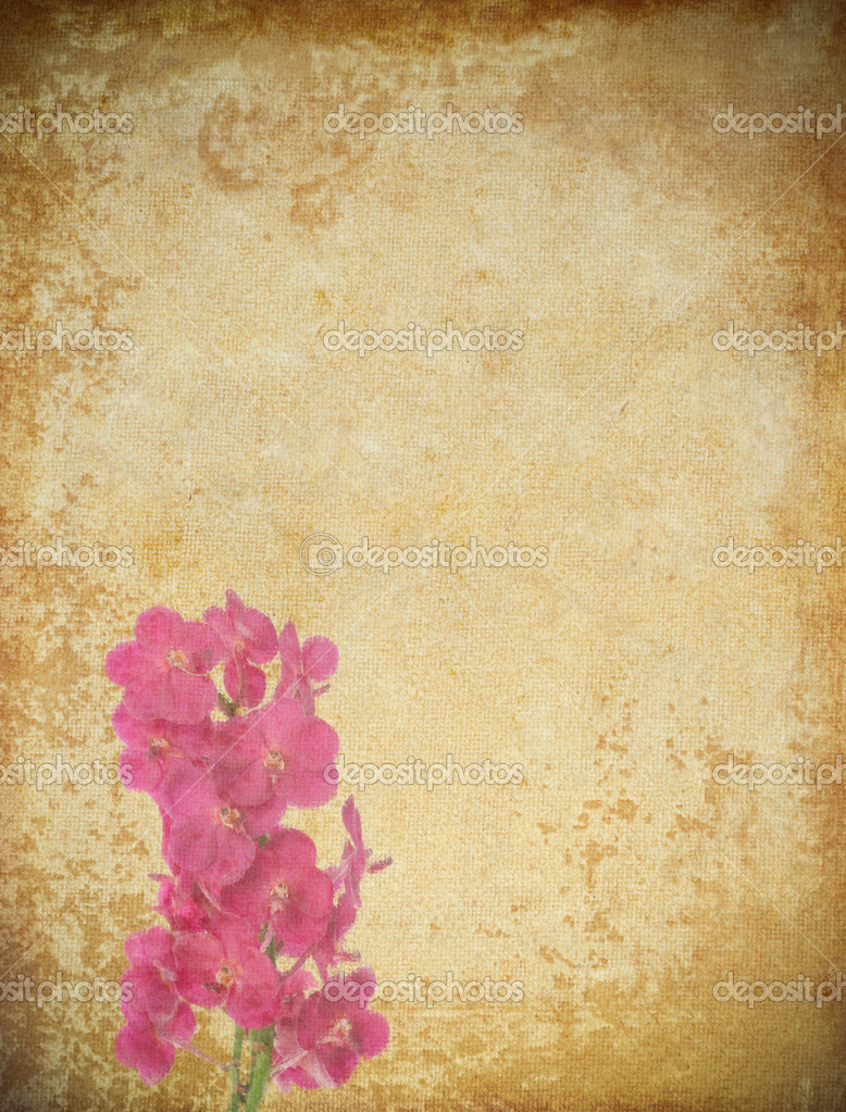 Old grunge paper and flower background  Stock Photo #9016320