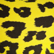 Leopard or jaguar pattern background — Stock Photo