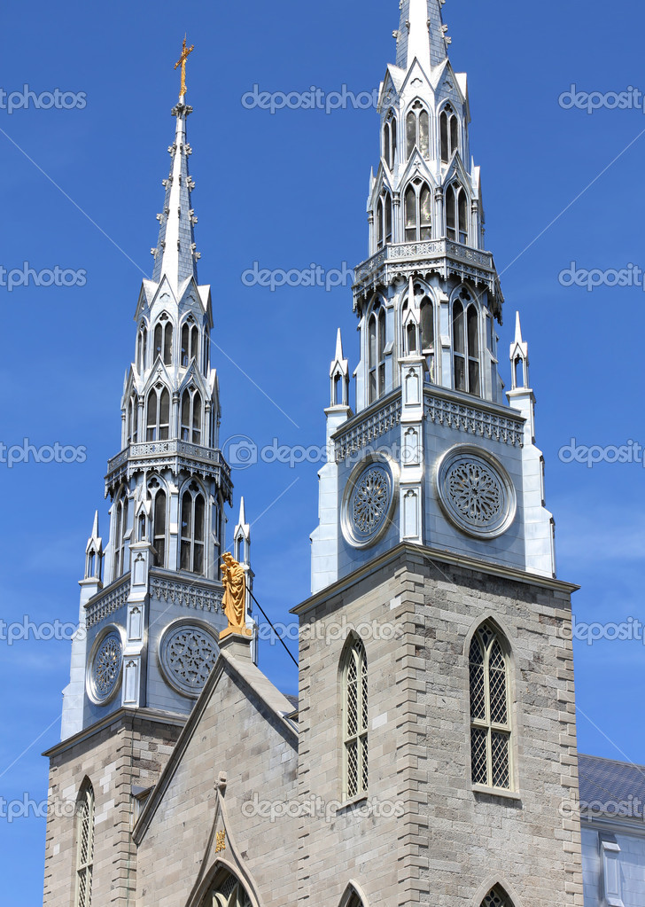 Cathedrale Notre Dame in Ottawa, Canada — Stock Photo #10617186