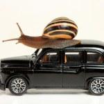 Snail on black car — Stock Photo #9657032
