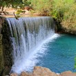 Waterfall in park GHashloshin Israel. — Stock Photo #9772904