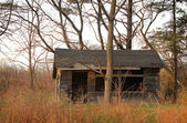 övergivet hus bland träden. — Stockfoto