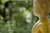Buddha statue in Thailand — Stock Photo