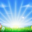 Easter eggs field background — Stock Vector