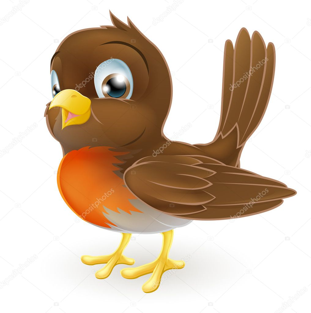 Cartoon Robin Bird
