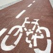 Bike path — Stock Photo #9014553
