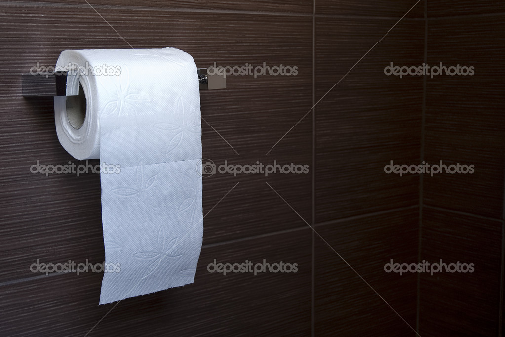 Toilet roll — Stock Photo #9048476