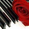 Stock Photo: Red rose on piano