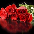 Red roses with reflection — Stock Photo #9065657