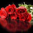Red roses with reflection — Stock Photo
