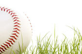 Baseball in the grass — Stockfoto