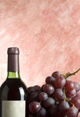 Bottle of wine with grapevine — Stock Photo