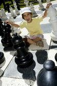 Lifesize のチェス — ストック写真